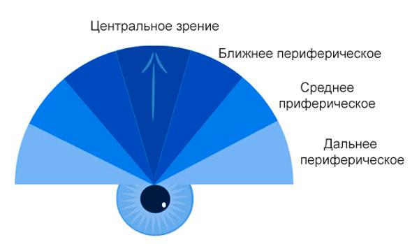 Зоны периферического зрения